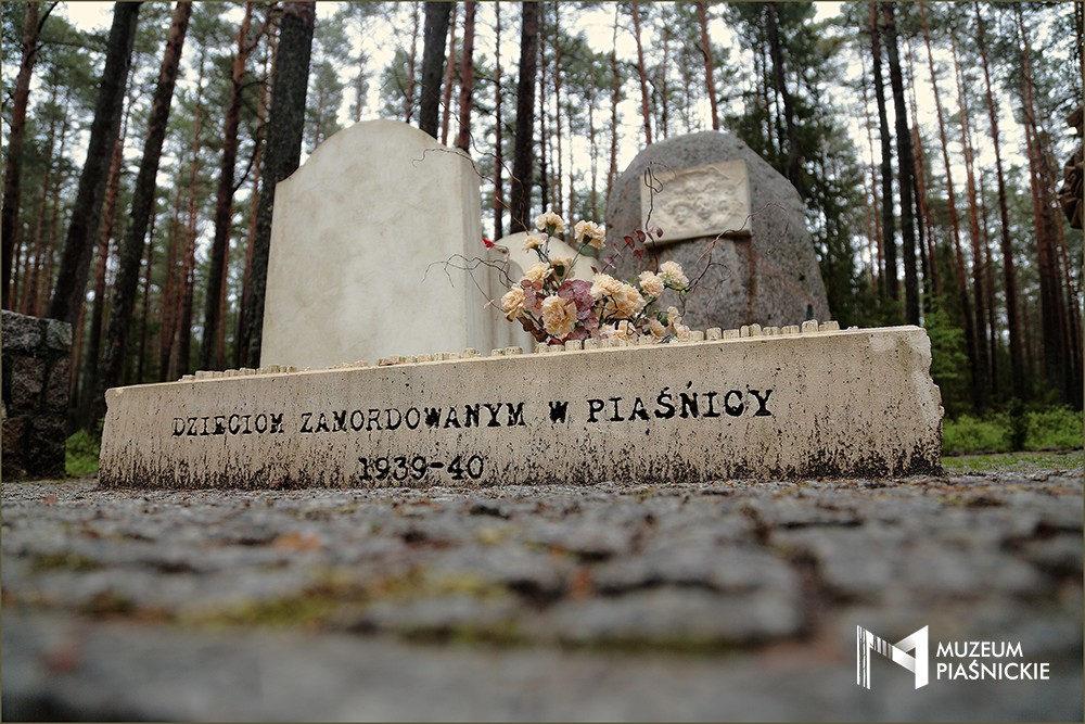 http://muzeumpiasnickie.pl/images/56k024V1g0H0V1u5D916m100t4C5x2a9.jpg
